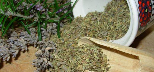 Ervas de Provence: cultive em casa e dê um toque francês nas refeições da família