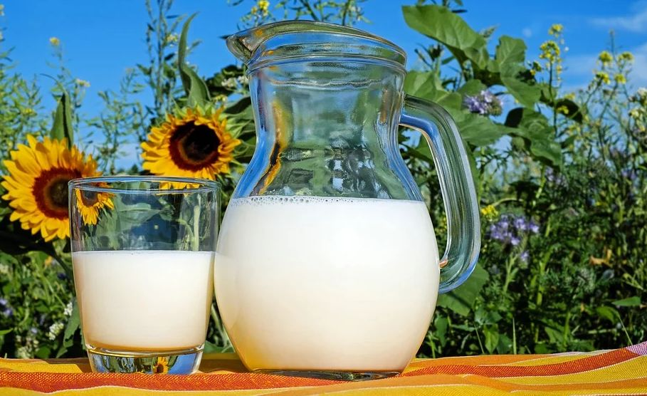 Cinco dicas para consumir produtos lácteos em seu dia a dia