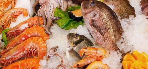 Seara Pescados dá dicas de como incluir mais peixes e frutos do mar no dia a dia