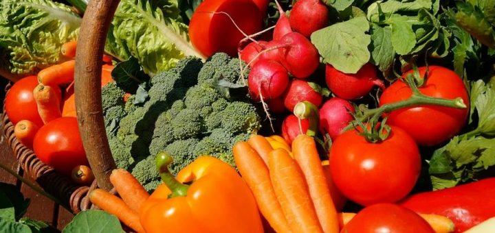 Especialista revela dicas para uma alimentação saudável na infância